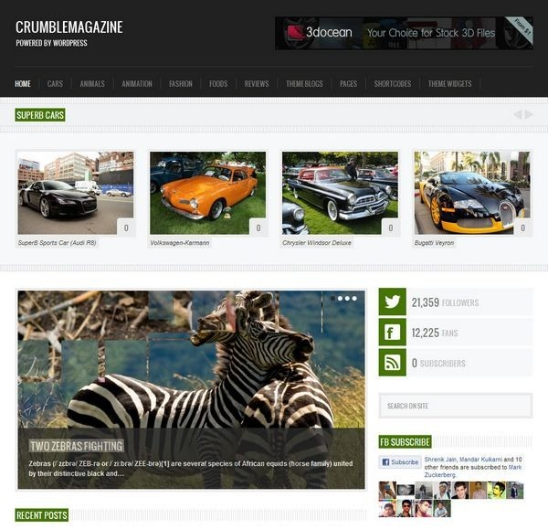 wordpress_responsive29