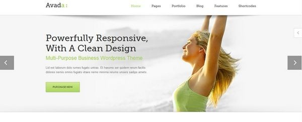 wordpress_responsive5