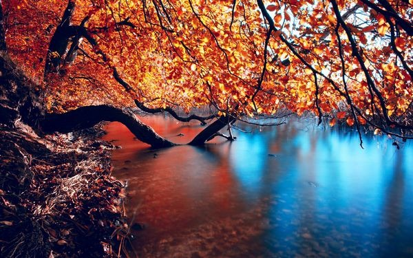 autumn_wallpapers_15