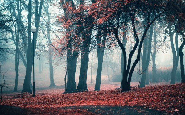 autumn_wallpapers_5