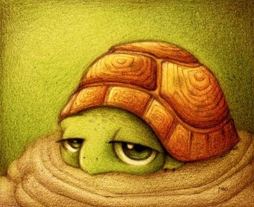 turtle_drawing
